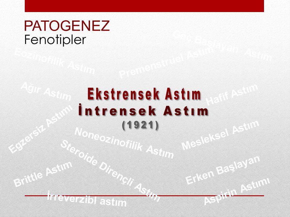 PATOGENEZ Ekstrensek Astım İntrensek Astım (1921) Fenotipler