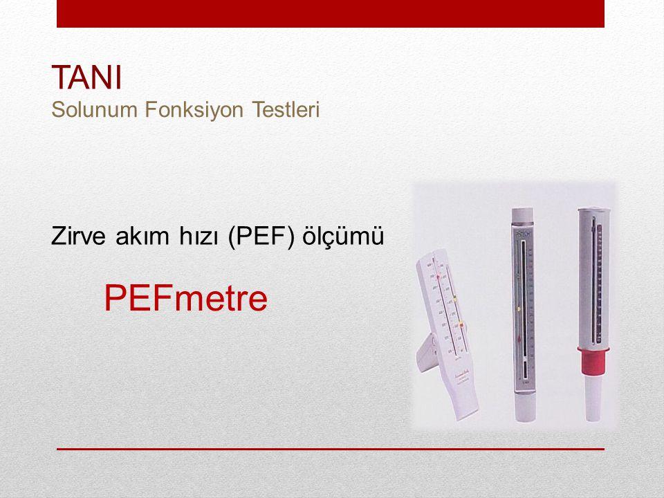 TANI Solunum Fonksiyon Testleri Zirve akım hızı (PEF) ölçümü PEFmetre