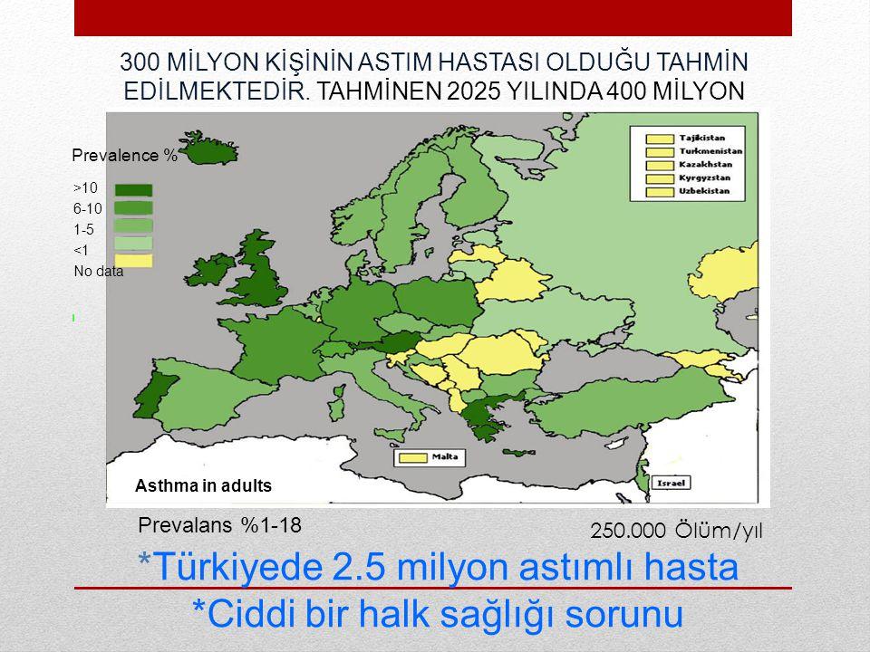 *Türkiyede 2.5 milyon astımlı hasta *Ciddi bir halk sağlığı sorunu