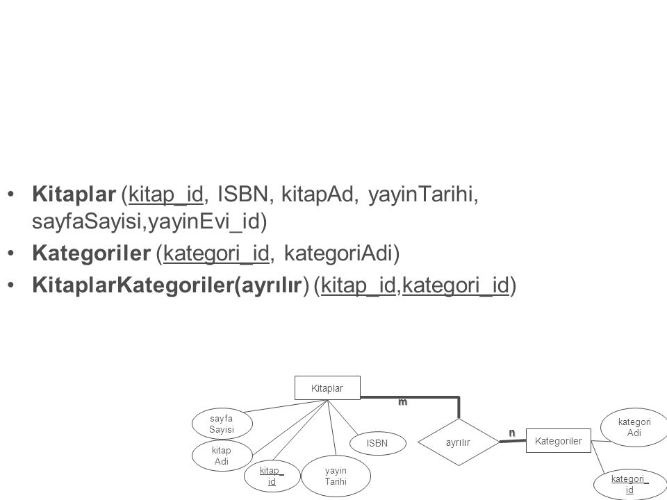 Kategoriler (kategori_id, kategoriAdi)