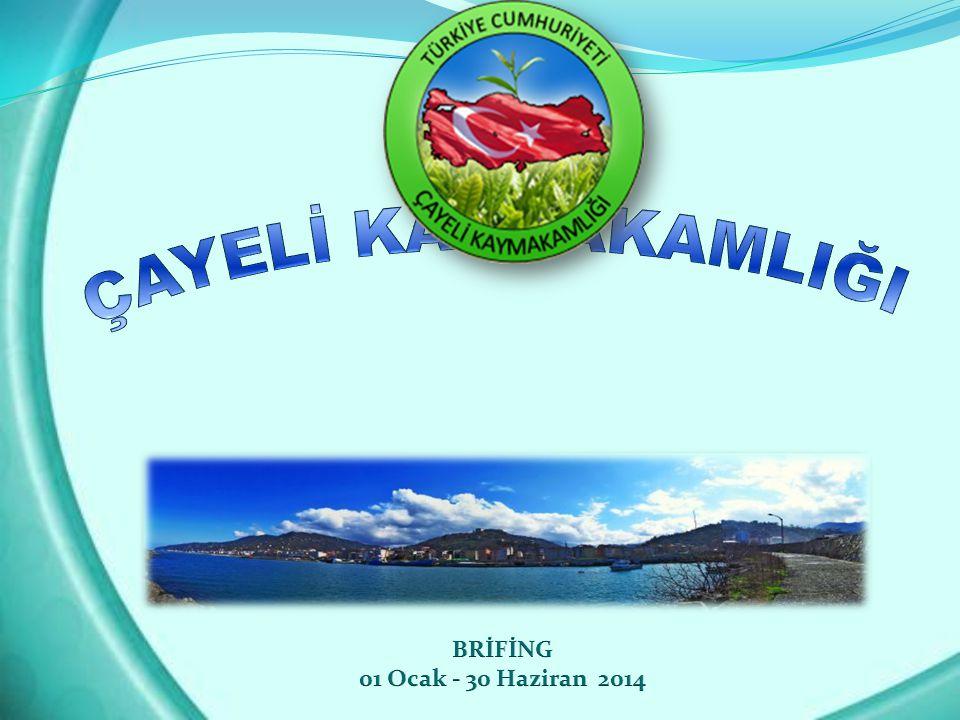 ÇAYELİ KAYMAKAMLIĞI BRİFİNG 01 Ocak - 30 Haziran 2014
