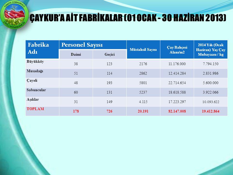 2014 Yılı (Ocak Haziran) Yaş Çay Mubayaası / kg