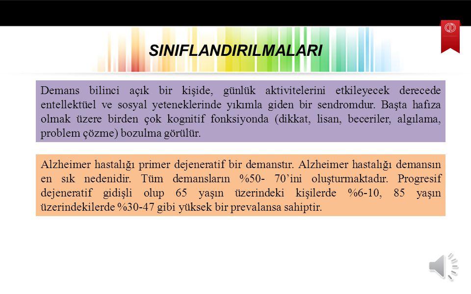 SINIFLANDIRILMALARI