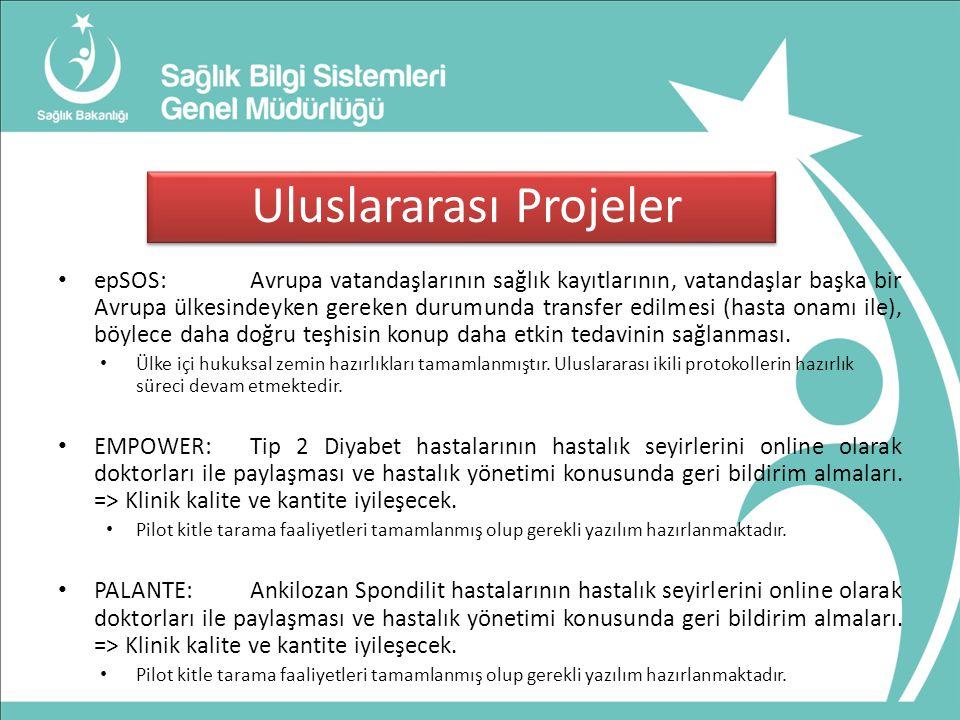 Uluslararası Projeler