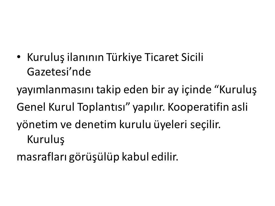 Kuruluş ilanının Türkiye Ticaret Sicili Gazetesi'nde