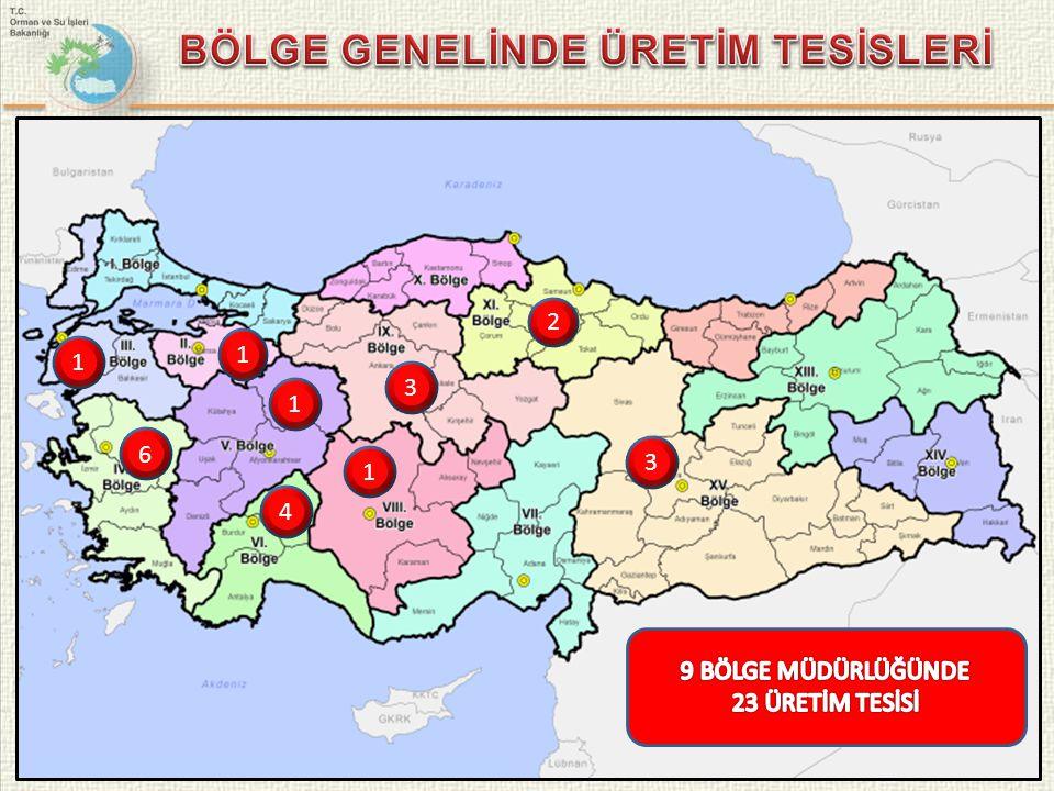 BÖLGE GENELİNDE ÜRETİM TESİSLERİ