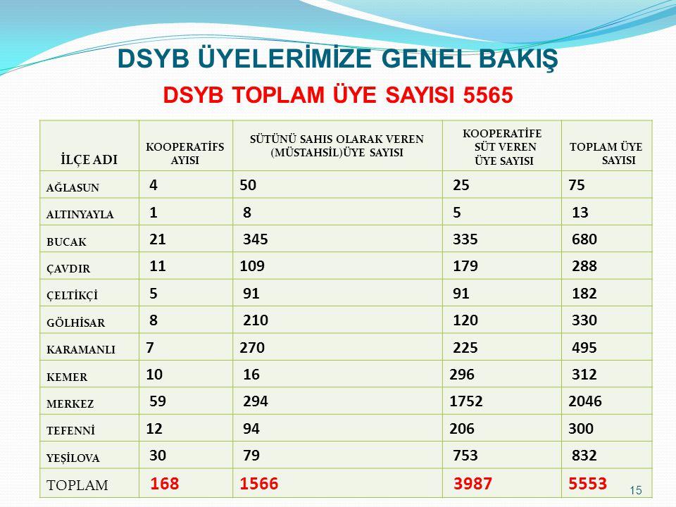 DSYB ÜYELERİMİZE GENEL BAKIŞ DSYB TOPLAM ÜYE SAYISI 5565