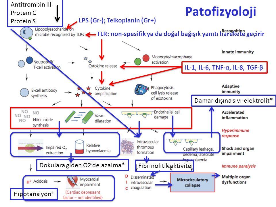 Patofizyoloji Antitrombin lll Protein C Protein S