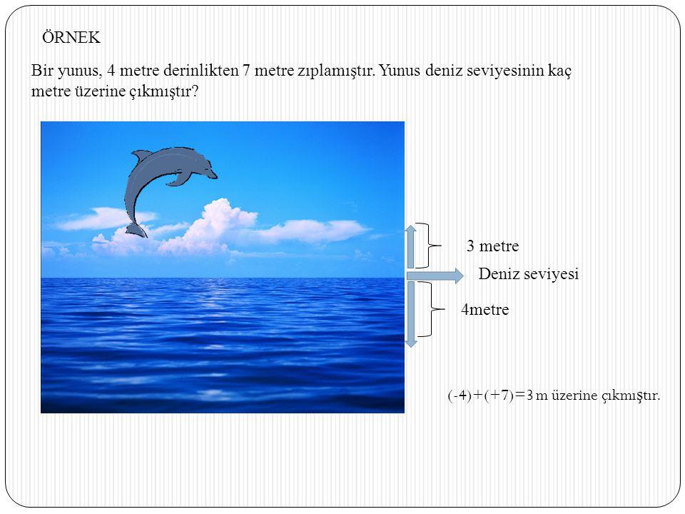 ÖRNEK Bir yunus, 4 metre derinlikten 7 metre zıplamıştır. Yunus deniz seviyesinin kaç. metre üzerine çıkmıştır