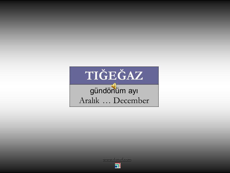 TIĞEĞAZ gündönüm ayı Aralık … December www.danef.com