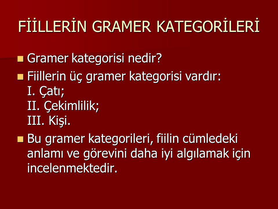 FİİLLERİN GRAMER KATEGORİLERİ