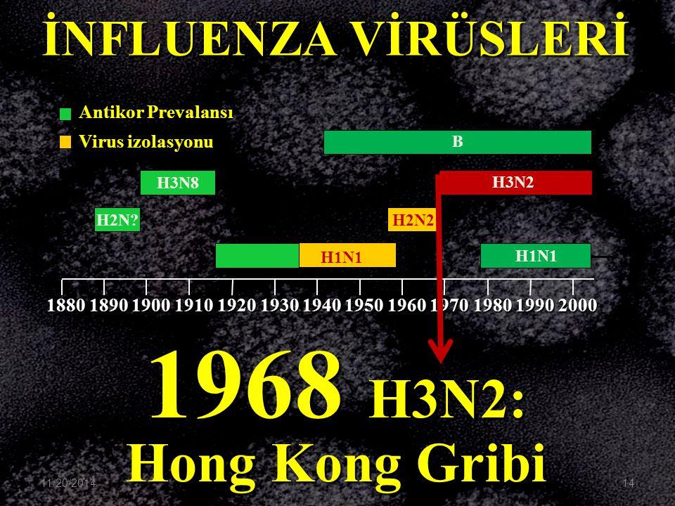 1968 H3N2: Hong Kong Gribi İNFLUENZA VİRÜSLERİ Antikor Prevalansı