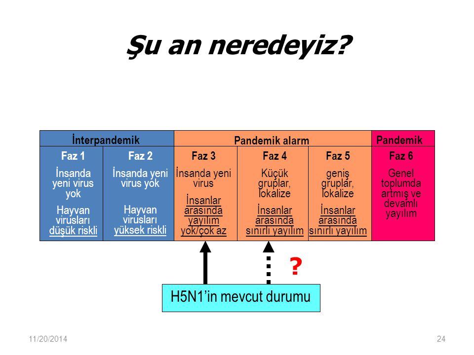 Şu an neredeyiz H5N1'in mevcut durumu İnterpandemik Pandemik alarm