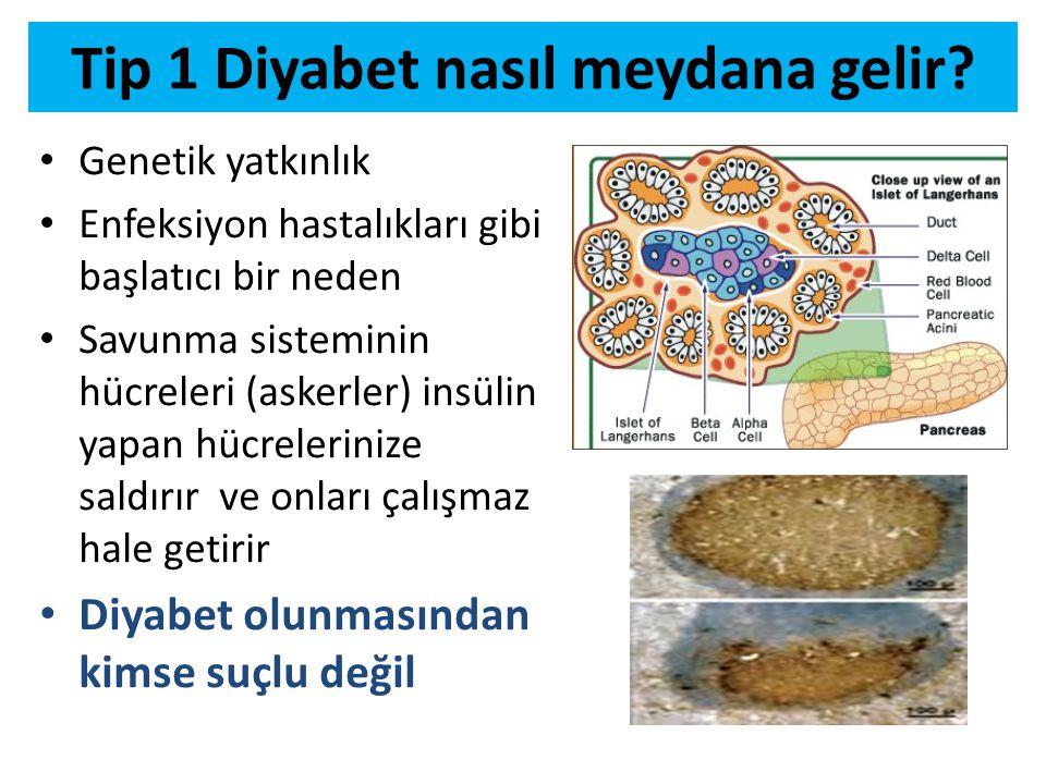 Tip 1 Diyabet nasıl meydana gelir