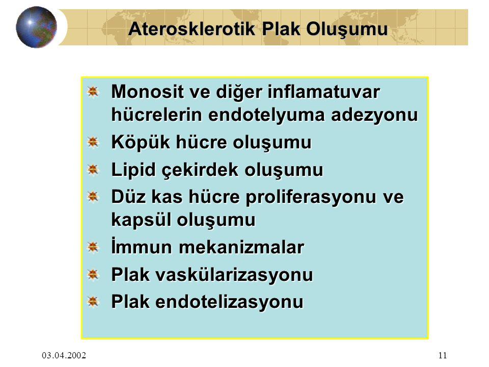 Aterosklerotik Plak Oluşumu