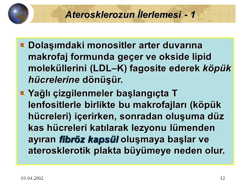 Aterosklerozun İlerlemesi - 1