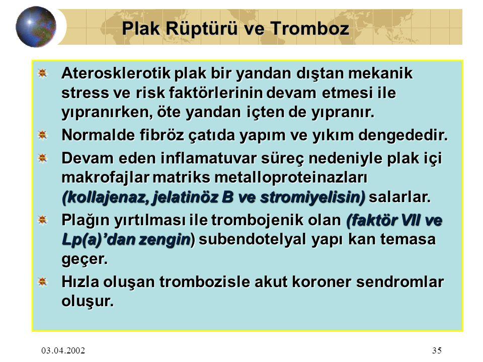 Plak Rüptürü ve Tromboz