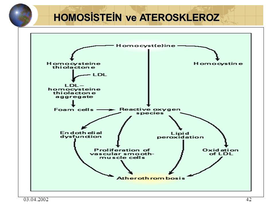 HOMOSİSTEİN ve ATEROSKLEROZ