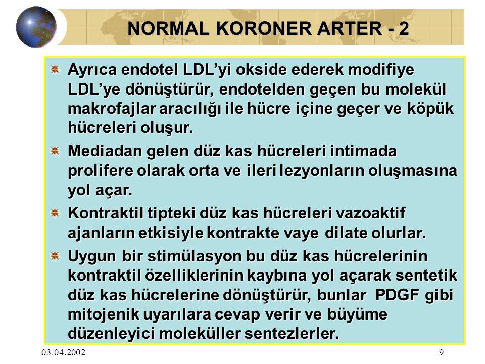 NORMAL KORONER ARTER - 2
