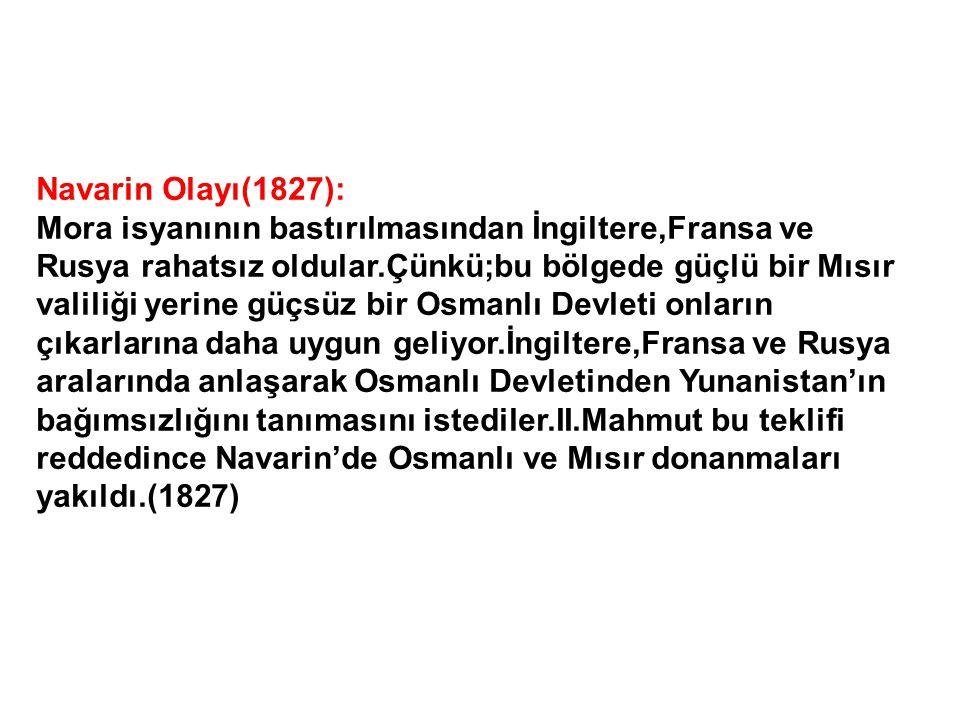 Navarin Olayı(1827):