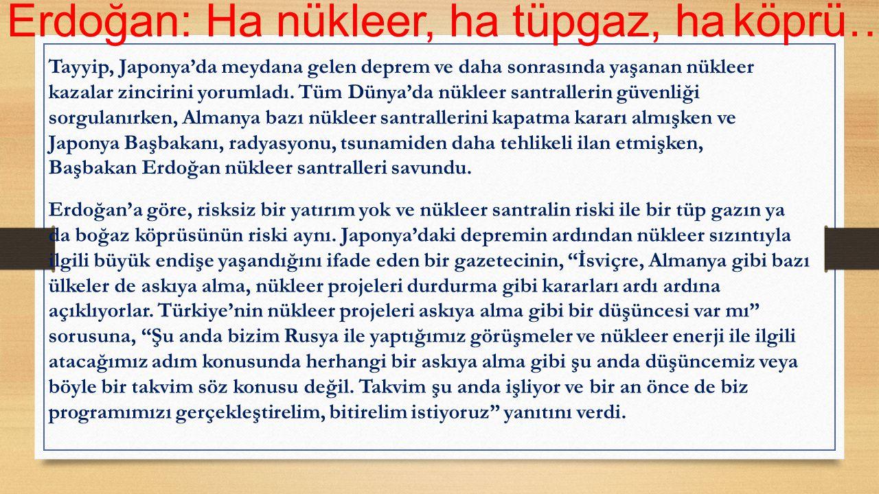 Erdoğan: Ha nükleer, ha tüpgaz, ha köprü…
