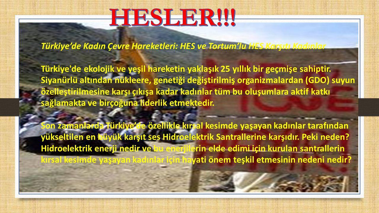 HESLER!!! Türkiye'de Kadın Çevre Hareketleri: HES ve Tortum'lu HES Karşıtı Kadınlar.