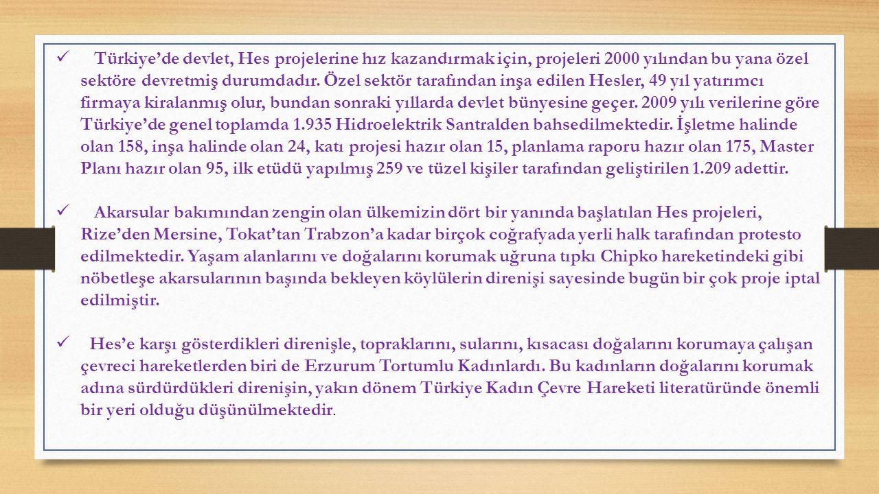 Türkiye'de devlet, Hes projelerine hız kazandırmak için, projeleri 2000 yılından bu yana özel sektöre devretmiş durumdadır. Özel sektör tarafından inşa edilen Hesler, 49 yıl yatırımcı firmaya kiralanmış olur, bundan sonraki yıllarda devlet bünyesine geçer. 2009 yılı verilerine göre Türkiye'de genel toplamda 1.935 Hidroelektrik Santralden bahsedilmektedir. İşletme halinde olan 158, inşa halinde olan 24, katı projesi hazır olan 15, planlama raporu hazır olan 175, Master Planı hazır olan 95, ilk etüdü yapılmış 259 ve tüzel kişiler tarafından geliştirilen 1.209 adettir.