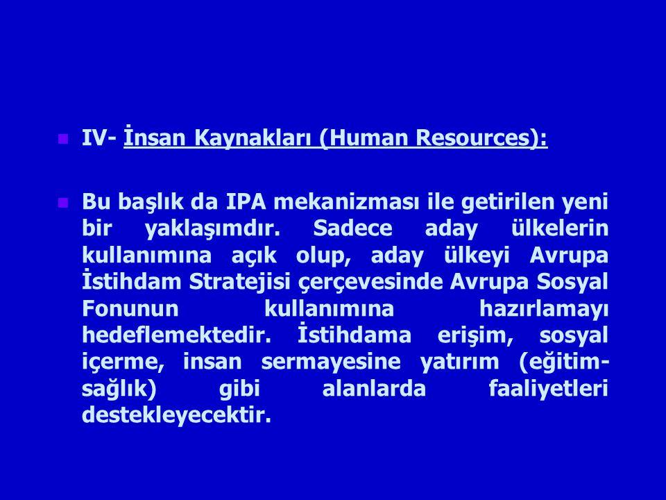 IV- İnsan Kaynakları (Human Resources):