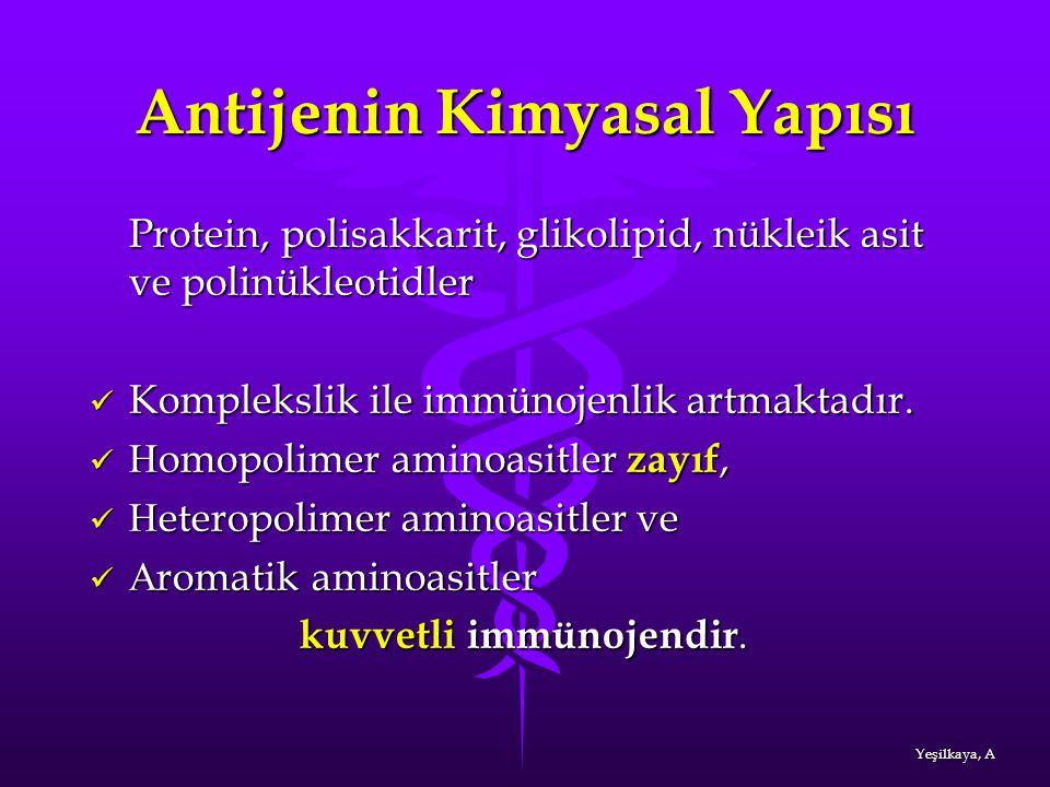 Antijenin Kimyasal Yapısı