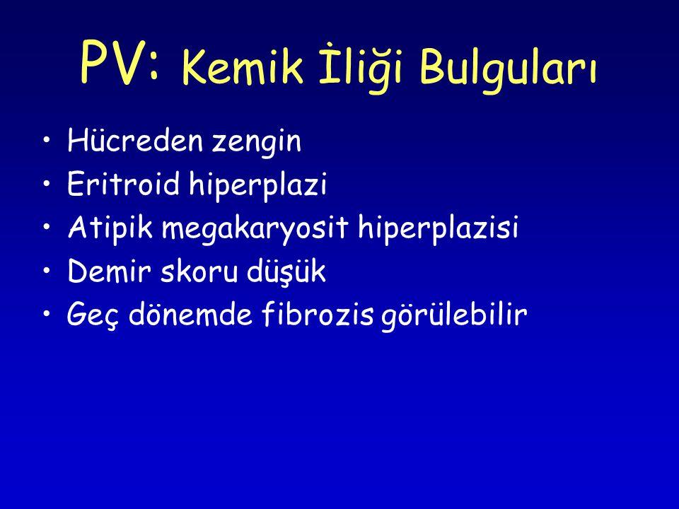 PV: Kemik İliği Bulguları