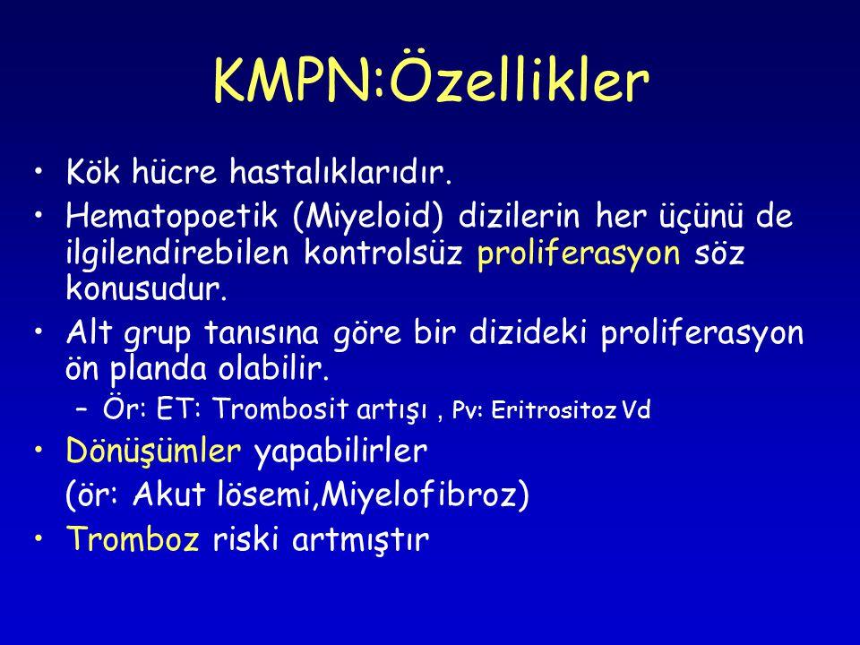 KMPN:Özellikler Kök hücre hastalıklarıdır.