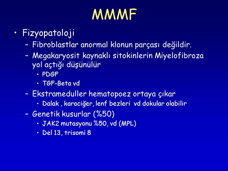 MMMF Fizyopatoloji Fibroblastlar anormal klonun parçası değildir.