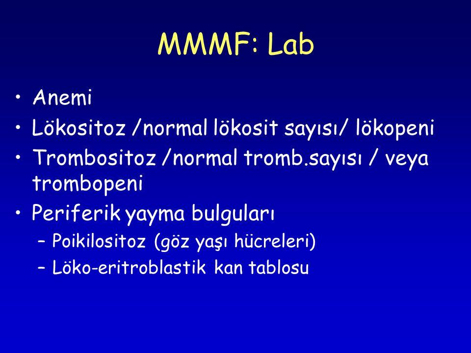MMMF: Lab Anemi Lökositoz /normal lökosit sayısı/ lökopeni