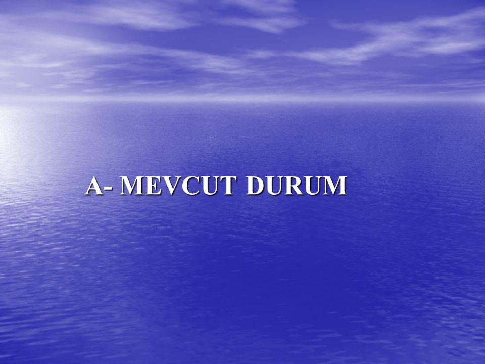 A- MEVCUT DURUM