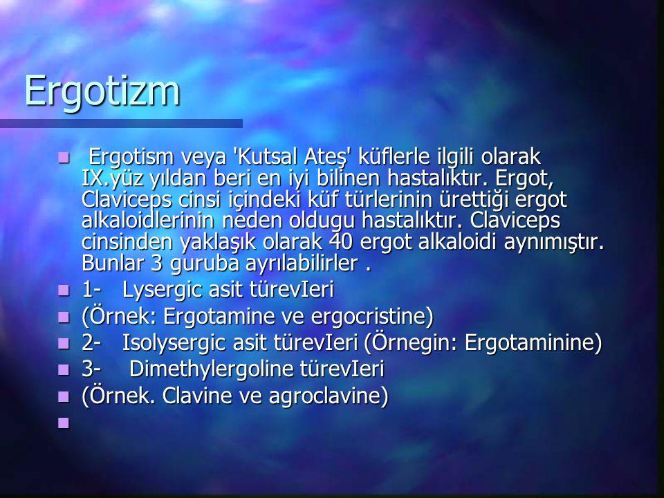 Ergotizm