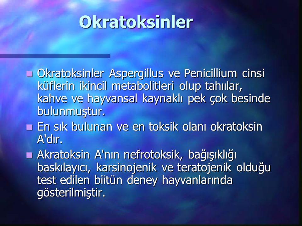 Okratoksinler