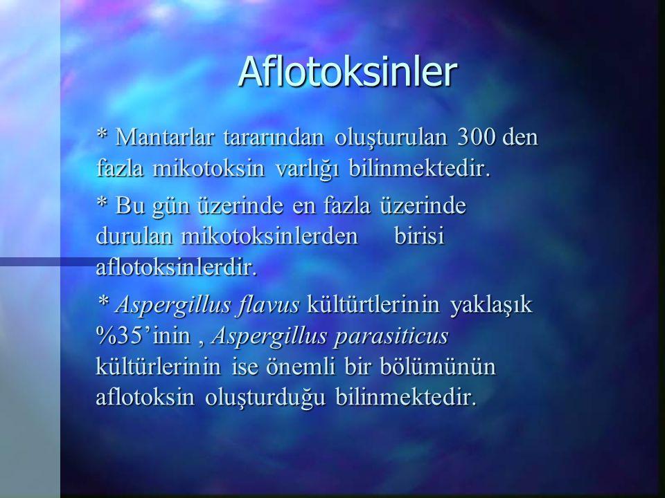 Aflotoksinler * Mantarlar tararından oluşturulan 300 den fazla mikotoksin varlığı bilinmektedir.