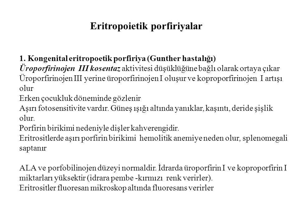 Eritropoietik porfiriyalar