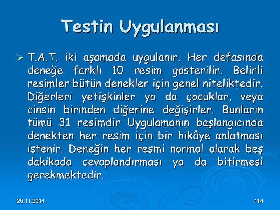 Testin Uygulanması