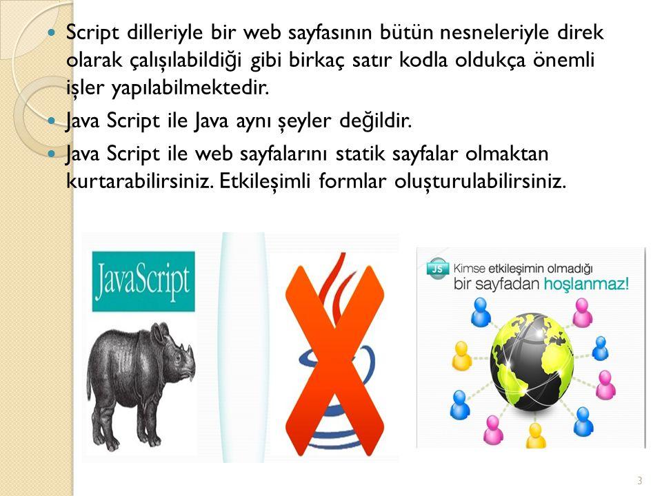 Script dilleriyle bir web sayfasının bütün nesneleriyle direk olarak çalışılabildiği gibi birkaç satır kodla oldukça önemli işler yapılabilmektedir.