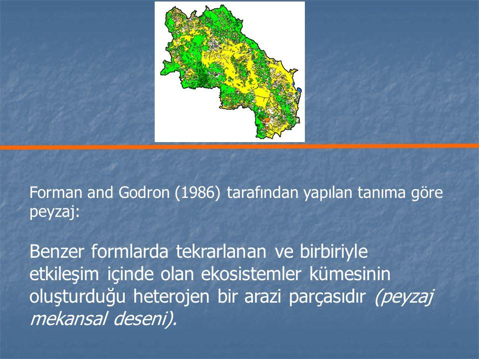 Forman and Godron (1986) tarafından yapılan tanıma göre peyzaj: