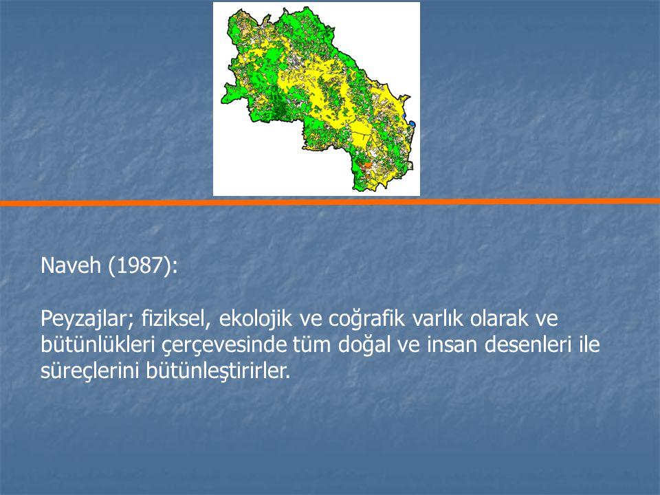 Naveh (1987): Peyzajlar; fiziksel, ekolojik ve coğrafik varlık olarak ve.