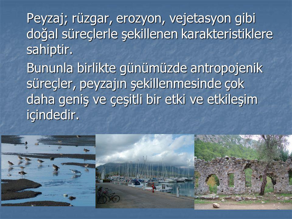 Peyzaj; rüzgar, erozyon, vejetasyon gibi doğal süreçlerle şekillenen karakteristiklere sahiptir.