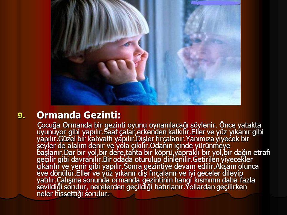 Ormanda Gezinti: