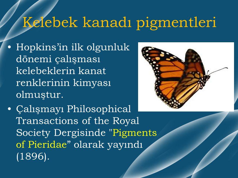 Kelebek kanadı pigmentleri