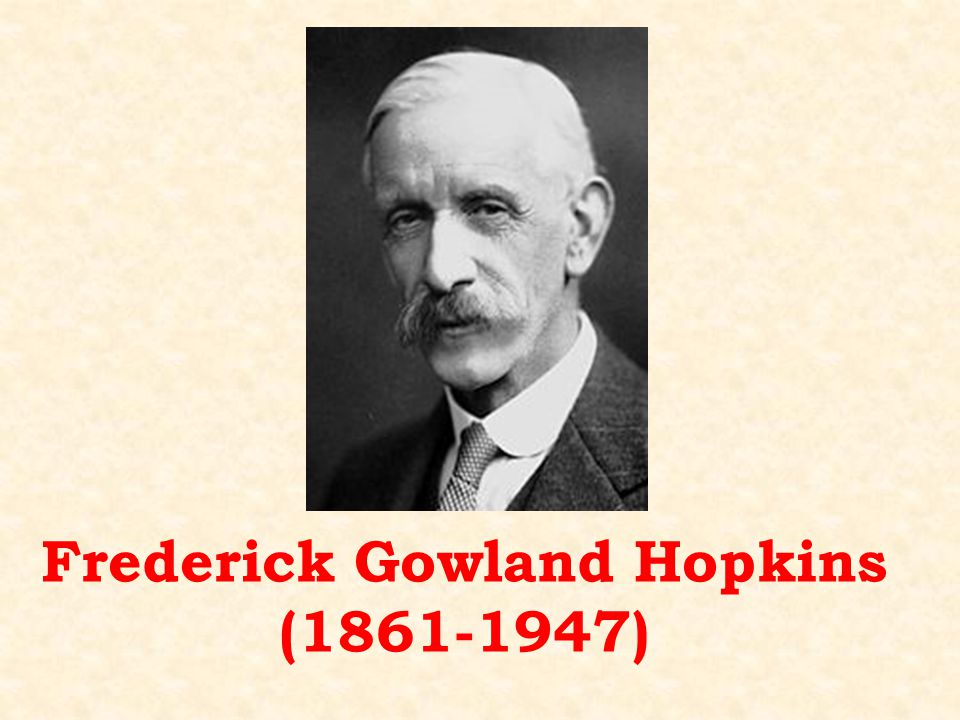 Frederick Gowland Hopkins (1861-1947)