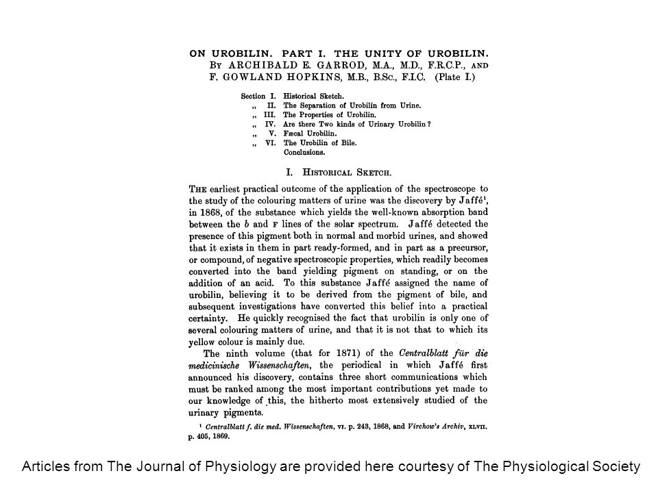 Articles from The Journal of Physiology are provided here courtesy of The Physiological Society