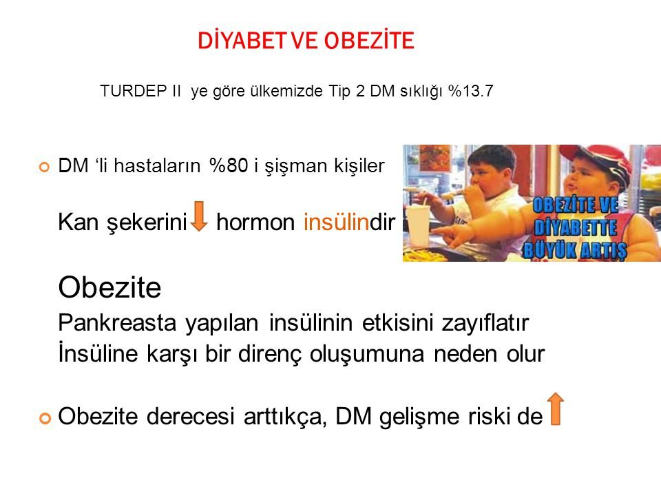 DİYABET VE OBEZİTE Kan şekerini hormon insülindir Obezite