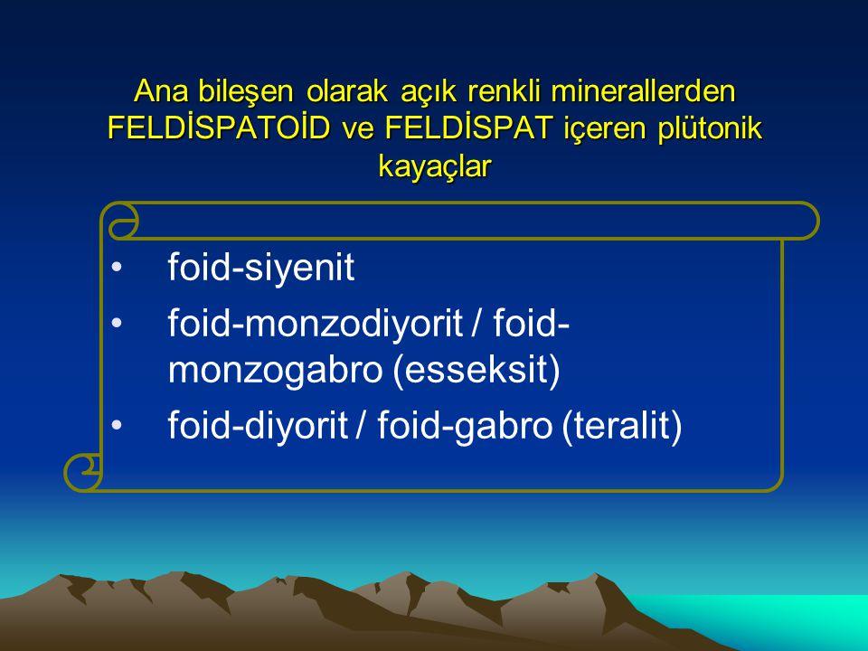 foid-monzodiyorit / foid-monzogabro (esseksit)