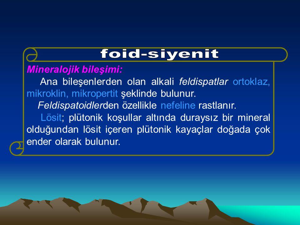 Mineralojik bileşimi: